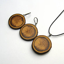 Sady šperkov - Sada z brestovej halúzky - 9687501_