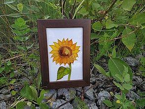 Obrázky - Sklenený obrázok v drevenom rámiku - 9690474_