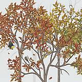 Grafika - Vtáčí les - jeseň - detail - 9690173_