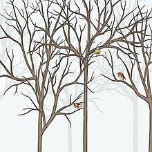 Grafika - Vtáčí les - zima 2 - detail - 9690189_