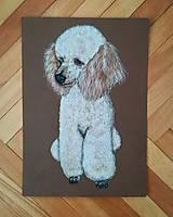 Kresby - Kresba psíka A4 - 9701101_