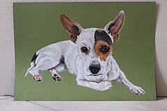Kresby - Kresba psíka A3 - 9701134_