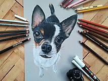 Kresby - Kresba psíka A4 - 9701158_