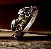 Prstene - Ako požiadať elfku o ruku  - 9712816_