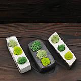 Dekorácie - miniatúrna RAKU záhrada - REINDEER MOSS - 9719233_