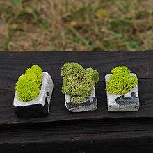 Dekorácie - miniatúrna RAKU záhrada - 9719185_