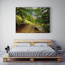 Obrazy - CESTA DO JESENE fotoplátno 90x60 cm - 9718212_