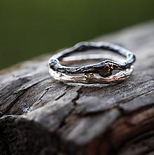 Prstene - Dva vetvičkové pro radost... - 9719480_