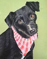 Kresby - Kresba psíka - 9721240_
