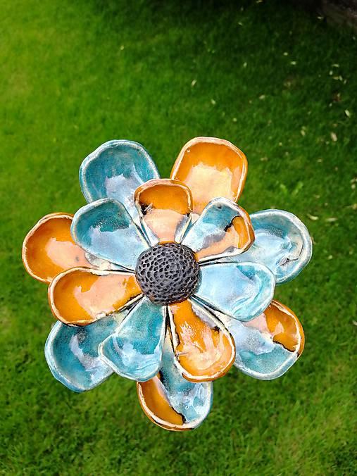 Kvet do záhrady modrý