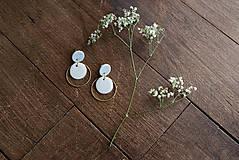 Náušnice - Polymérové náušnice   Gentle circles - 9731070_