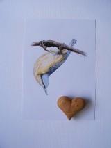 Kresby - Kresba: Brhlík akrobat - 9729421_