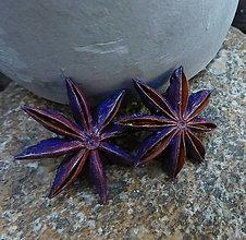 Náušnice - napichovačky prírodné hviezdice - 9732821_