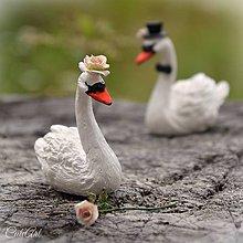 Dekorácie - Svadobné labute - figúrky na svadobnú tortu - 9736920_