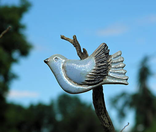 Keramická brošňa - holubica