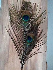 Ozdoby do vlasov - Pávia krása - 9741707_