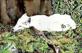Obrazy - Muzeálna reprodukcia ilustrácie - Lišiak - 9741820_