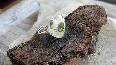 Prstene - Živicový prsteň s kvietkami (so sedmokráskou č. 2219) - 9747638_