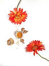 Potraviny - Včelí peľ obnôžkový - 9762031_