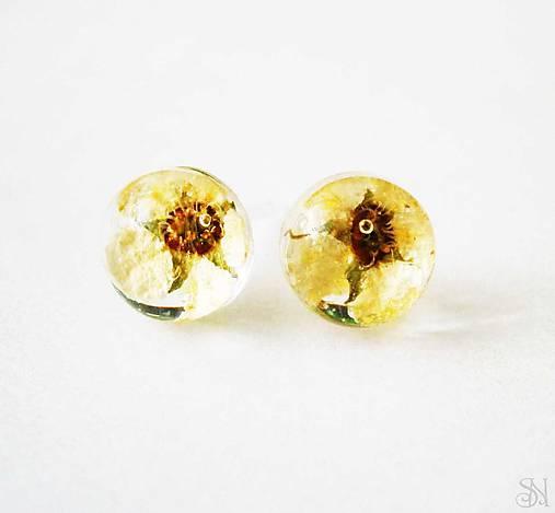 Živicové guličky s béžovými kvetmi - ANTIALERGICKÉ napichovacie náušnice 3cc8eb4a89d