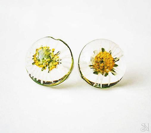 Živicové guličky so sedmokráskami - ANTIALERGICKÉ napichovacie náušnice ab418e5a0b9