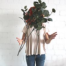 Tričká - Handmade_dámske tričko_Albert - 9766737_