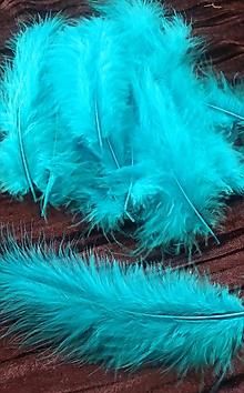 Suroviny - Pštrosie perie -20ks v balení - 9772548_