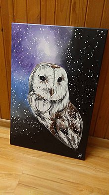 Obrazy - One small owl in the infinity universe - 9774280_