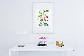 Kresby - Botanická kresba rastliny - Fazuľa šarlátová - 9777824_