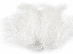 Suroviny - Pštrosie perie 20 ks (biele) - 9779534_