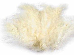 Suroviny - Pštrosie perie 20 ks (vanilková) - 9779539_
