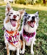 Pre zvieratká - DOGSCARF NAMIERU (Pestrofarebná) - 9787448_