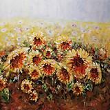 Obrazy - Slnecnice (100x100cm) - 9796059_