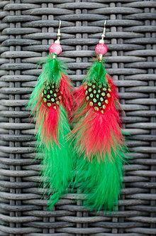 Náušnice - Papagáj - Pierkové náušnice - 9800435_