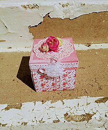 Krabičky - Krabička na peniaze Nr.1 - 9802761_