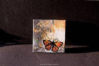 Magnetky - Magnetka motýľ - 9811562_