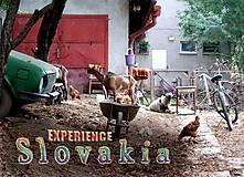 Magnetka Experience Slovakia!