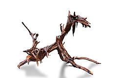 Dekorácie - socha z dreva koreňov-sediaci psík - 9812590_