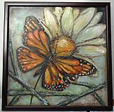 Obrazy - Motýľ a margarétka - 9817813_