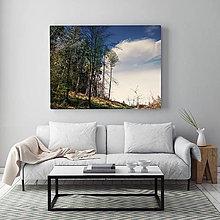 Obrazy - CESTA NA VŔŠOK fotoplátno 90x60 cm - 9817268_