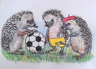 Kresby - ježkovia futbalisti po 2. :-) - 9815300_