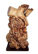 Socha - Strom ako prírodné umelecké dielo - 9820207_