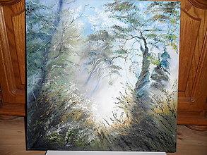 Obrazy - Zrána, blízko hmlistého lesa - 9821664_