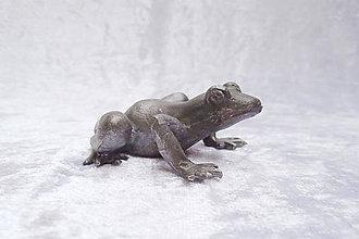 Socha - Cínová soška - žaba - 9827096_
