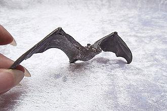 Sochy - Cínová soška - netopier - 9829031_