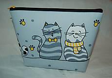 Taštičky - mačičková - 9833518_
