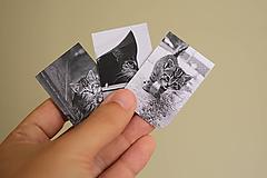 Papiernictvo - Magnetické záložky - Mačacia trilógia - 9836682_