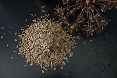 Nezaradené - domáce semienka kôpru na siatie- ZĽAVA - 9840113_