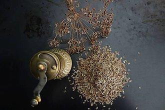 Potraviny - semienka kôpru na čaj - 9840117_