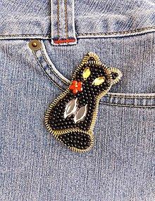 Odznaky/Brošne - Black cat - 9841819_